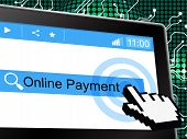 Online Payment Indicates World Wide Web And Amount