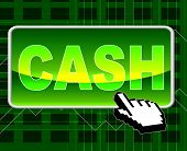 Cash Button Means World Wide Web And Network