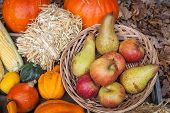 foto of horn plenty  - Pumpkins apples pears tomatos and straw on a wooden plate - JPG