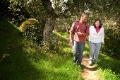 foto of black american  - Young man walking with his visually impaired friend on a forest path - JPG