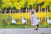 Little Happy Baby Girl Running At A River Shore Chasing Wild Geese In An Autumn Park