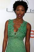 LOS ANGELES - FEB 6:  Karimah Westbrook at the 46th NAACP Image Awards Arrivals at a Pasadena Convention Center on February 6, 2015 in Pasadena, CA
