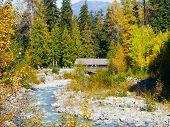 Fitzsimmons Creek Whistler