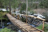 Wooden bridge in forest at early spring time