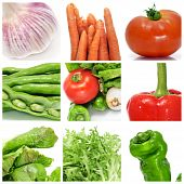 stock photo of escarole  - a collage of nine pictures of different vegetables - JPG