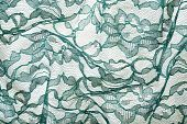 stock photo of spandex  - Green wrinkled lace on white spandex background macro view - JPG