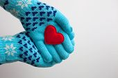 Read Heart In Hands In  Warm  Gloves For Valentine's Day