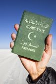 stock photo of sahara desert  - white sand of Sahara desert in th background and a male hand holding a green passport with a white half moon and star - JPG