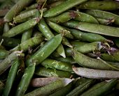 green vegetables in market