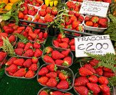Strawberries in boxes as healthy food on sale