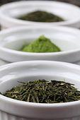 Tea Collection - Bancha Or Sencha Green Tea