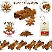 Anise stars and cinnamon sticks set