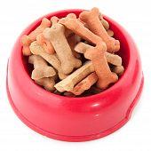 Schüssel mit Dog cookies