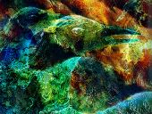 foto of emerald  - abstract background collage with emerald green phoenix bird - JPG