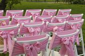 Chairs with pink bows
