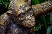 image of ape  - Statue of Wild Chimpanzee Mammal Ape Monkey Animal - JPG