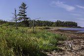 foto of shoreline  - The shoreline on the south shore of Prince Edward Island - JPG