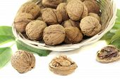 pic of walnut  - fresh walnuts with walnut leaves in a basket on bright background - JPG