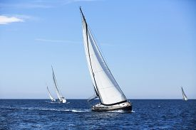 picture of sailing vessels  - Sailing ship yachts - JPG