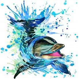 pic of bottlenose dolphin  - Funny dolphin with watercolor splash textured background - JPG