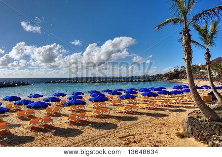 Постер, плакат: Канарские острова пляж и пальмы, холст на подрамнике