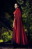Beautiful brunette woman in black old-fashioned dress and red cloak walking in the thicket of the ma poster