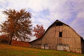 Cumberland Barns