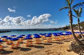 picture of canary-islands  - A beach with sunbeds parasols and a Palm tree - JPG