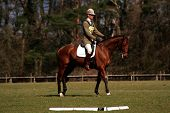 William Fox Pitt doing a dressage test