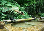 Japanese Bamboo Fountain
