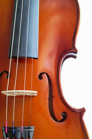 stock photo of musical instrument string  - Musical instruments - JPG