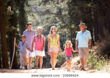 Постер, плакат: 3 Поколения семьи на страны Уолк, холст на подрамнике