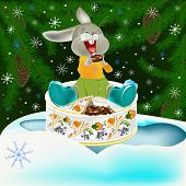 image of have sweet dreams  - The small fantastic hare with pleasure has unpacked the celebratory New Year - JPG