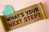 Word Writing Text What Is Your Next Step Question. Business Concept For Analyse Ask Yourself Before  poster