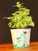 foto of loamy  - Flowerpot painted by hands - JPG
