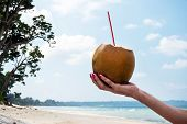 Coconut Drink In Hand. Hand Of Black Woman Holding Coconut With Drinking Straw At Caribbean Coast Fr poster