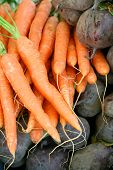 Carrots And Beetroots