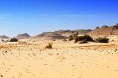 Sahara Desert, Western Desert, Egypt