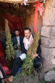 Khat Dealer