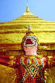 picture of monk fruit  - The Red Monkey Grand Palace thailand Afternoon - JPG