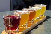 Degustación de cerveza