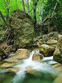 foto of irish moss  - Woodland stream in the Grand Canyon of Crimea - JPG
