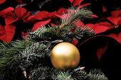 Decoration For Xmas Holidays