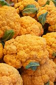 Pile of bright Orange Cauliflower at the farmers market