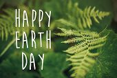 Happy Earth Day Text, Concept. Beautiful Fern Leaf And Moss  In Woods. Fern Leaves In Sunny Forest. poster