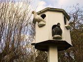Doves And Dovecote