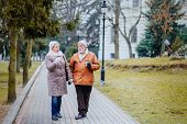 Old Husband And Wife Walking In Nature, Happy Elderly Man And Woman Walking In Park And Drinking Cof poster