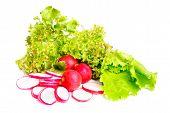 frischer Salat, ganze und geschnittene Radieschen, isoliert auf weiss