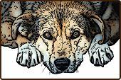 Sad Dog Illustration