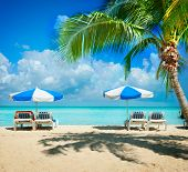 Caribbean Beach.Paradise.Vacation and Tourism concept. Sunbeds and Palm